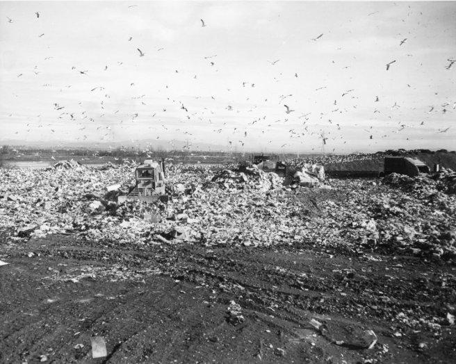landfillold-9jpg-cd7389a9f56f60ca